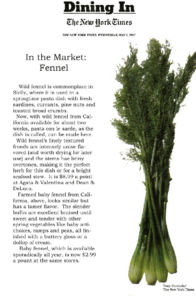 In the Market: Fennel...